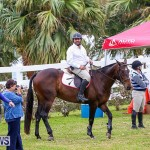RES Spring Horse Show Series Bermuda, March 11 2017-67
