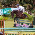 RES Spring Horse Show Series Bermuda, March 11 2017-71