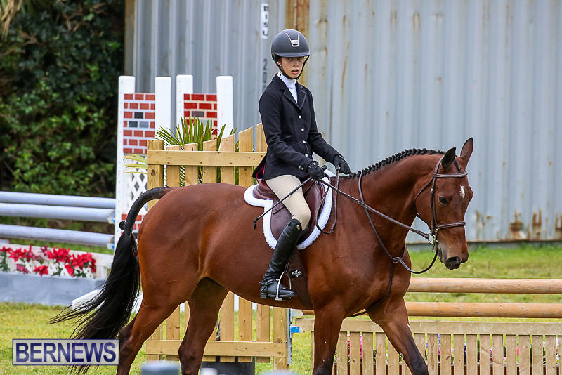 RES-Spring-Horse-Show-Series-Bermuda-March-11-2017-75