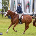RES Spring Horse Show Series Bermuda, March 11 2017-76