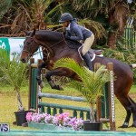 RES Spring Horse Show Series Bermuda, March 11 2017-79
