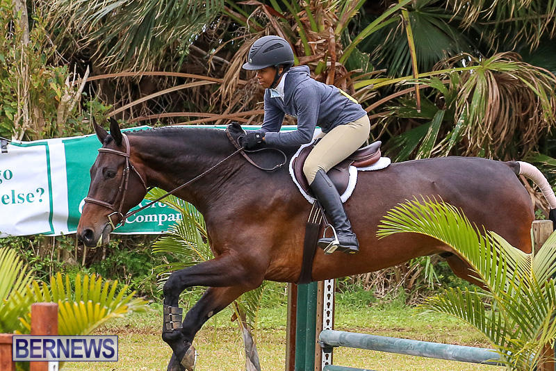 RES-Spring-Horse-Show-Series-Bermuda-March-11-2017-80