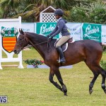 RES Spring Horse Show Series Bermuda, March 11 2017-81