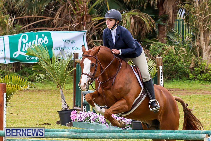 RES-Spring-Horse-Show-Series-Bermuda-March-11-2017-83