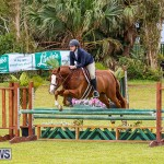 RES Spring Horse Show Series Bermuda, March 11 2017-84
