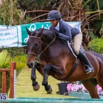 RES Spring Horse Show Series Bermuda, March 11 2017-85