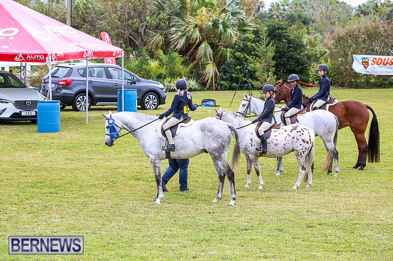 RES-Spring-Horse-Show-Series-Bermuda-March-11-2017-9