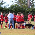 Rugby Bermuda March 8 2017 (27)