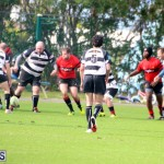 Rugby Nicholl Shield & Scully Cup Bermuda March 4 2017 (1)