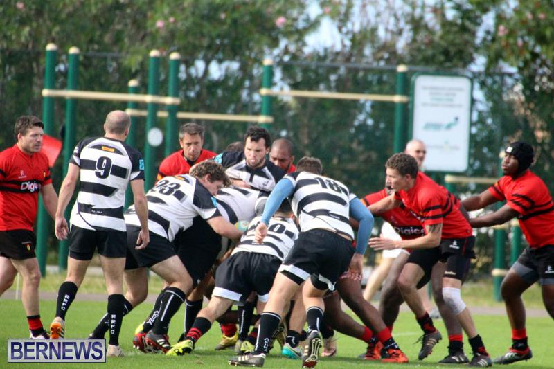 Rugby-Nicholl-Shield-Scully-Cup-Bermuda-March-4-2017-15