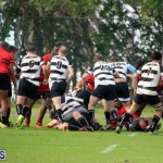 Rugby Nicholl Shield & Scully Cup Bermuda March 4 2017 (2)