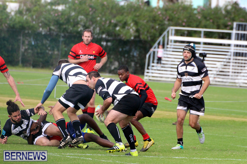 Rugby-Nicholl-Shield-Scully-Cup-Bermuda-March-4-2017-5
