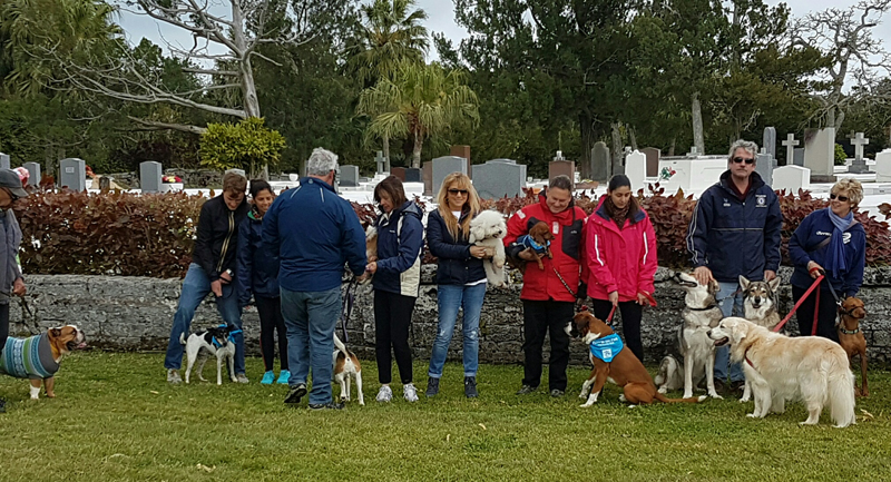 SPCA-Paws-To-The-Park-Bermuda-March-5-2017-21