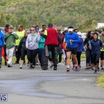 WindReach Walk And Roll Bermuda, March 11 2017-16
