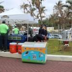 Zoom Around the Sound Bermuda March 25 2017 (2)