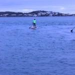 Zoom Around the Sound Bermuda March 25 2017 (50)