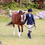 Ag Show Bermuda April 21 2017 2 (25)