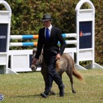 Ag Show Bermuda April 21 2017 2 (33)