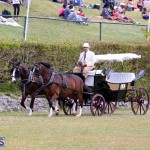 Ag Show Bermuda April 21 2017 2 (4)