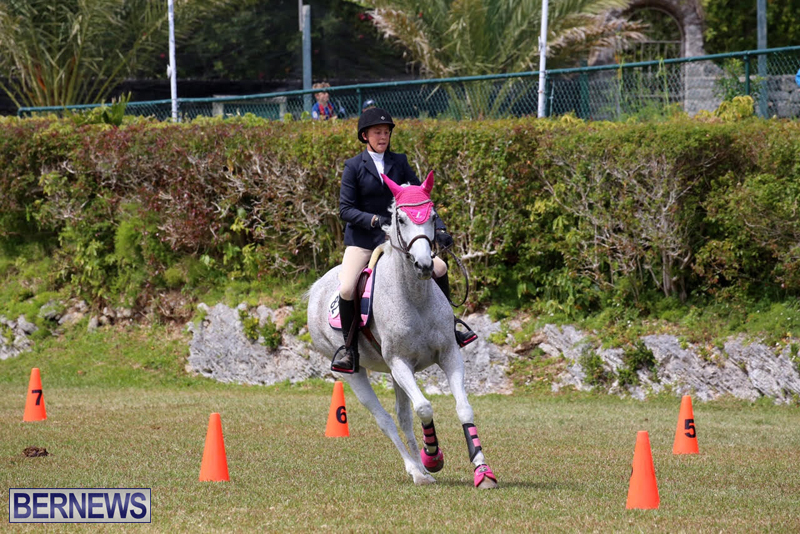 Ag-Show-Bermuda-April-21-2017-2-45