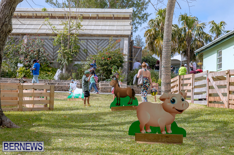 AgShow-Day-3-Bermuda-April-22-2017-46