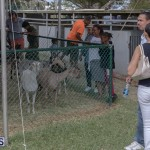 AgShow Day 3 Bermuda April 22 2017 (47)