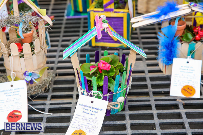 Agricultural-Show-Bermuda-April-19-2017-248