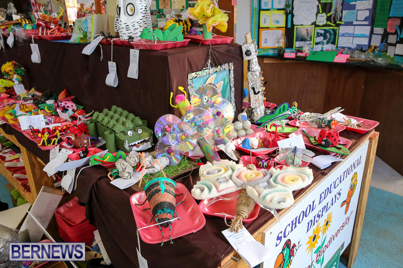 Agricultural-Show-Bermuda-April-19-2017-263