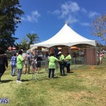 Agriculture show entry Bermuda April 21 2017 (1)