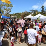Agriculture show entry Bermuda April 21 2017 (11)