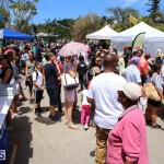 Agriculture show entry Bermuda April 21 2017 (12)