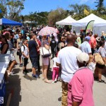 Agriculture show entry Bermuda April 21 2017 (13)