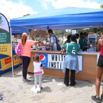 Agriculture show entry Bermuda April 21 2017 (30)