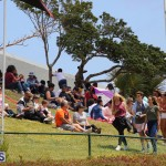 Agriculture show entry Bermuda April 21 2017 (40)