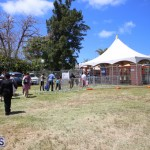 Agriculture show entry Bermuda April 21 2017 (9)