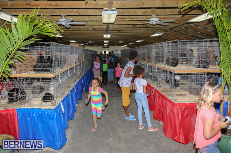 Agshow-Bermuda-April-21-2017-4