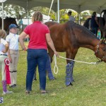 Agshow Bermuda April 21 2017 (46)