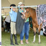 Agshow Bermuda April 21 2017 (86)