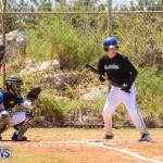 Baseball Bermuda, April 22 2017-11
