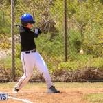 Baseball Bermuda, April 22 2017-12
