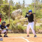 Baseball Bermuda, April 22 2017-14