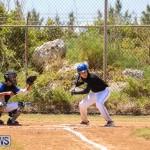 Baseball Bermuda, April 22 2017-18