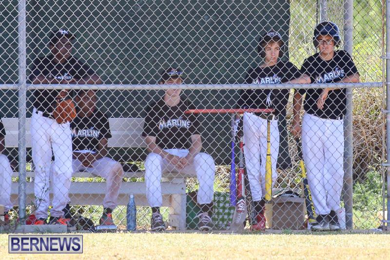Baseball-Bermuda-April-22-2017-21
