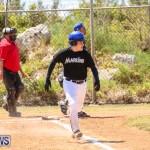 Baseball Bermuda, April 22 2017-22