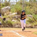 Baseball Bermuda, April 22 2017-34
