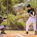 Baseball Bermuda, April 22 2017-37