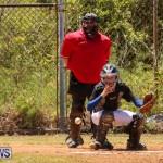 Baseball Bermuda, April 22 2017-45