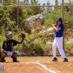 Baseball Bermuda, April 22 2017-56