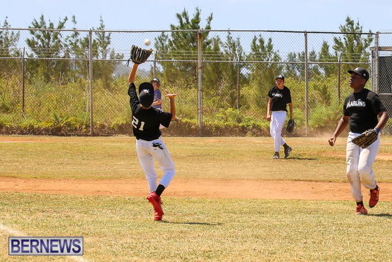 Baseball-Bermuda-April-22-2017-6