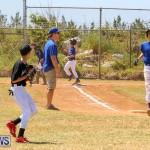 Baseball Bermuda, April 22 2017-8